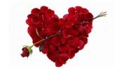 nhung-mon-qua-nho-mang-y-nghia-lon-trong-ngay-valentine-202495.html