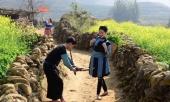 canh-dong-hoa-cai-vang-o-ban-cat-cat-hut-hon-du-khach-den-sa-pa-256418.html