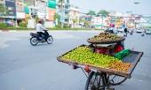 man-dau-mua-gia-dat-gap-3-van-duoc-ua-chuong-260443.html