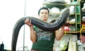 nghe-an-cau-duoc-ca-lech-khung-dai-gan-2m-nang-15-kg-266734.html