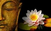12-dieu-phat-day-du-la-ai-cung-phai-khac-cot-ghi-tam-tron-doi-doc-ngay-se-thay-doi-cuoc-doi-ban-day-291276.html