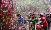 tet-nguyen-dan-2019-co-the-duoc-nghi-bao-nhieu-ngay-302212.html