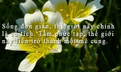 10-triet-ly-nhan-sinh-can-biet-de-tro-thanh-nguoi-hanh-phuc-302645.html