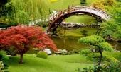 lac-loi-tai-xu-ao-mong-trong-nhung-khu-vuon-dep-nhu-co-tich-nay-313516.html