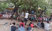 hang-tram-canh-sat-vay-rap-truong-ga-khung-bat-gan-120-con-bac-321928.html
