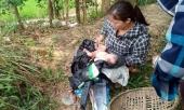 be-gai-so-sinh-con-nguyen-day-ron-bi-bo-roi-tren-canh-dong-327249.html