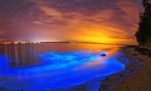 nhung-bai-bien-tuyet-dep-o-maldives-334230.html