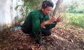 khong-khoi-to-vu-phat-hien-hon-300-thi-the-thai-nhi-tai-nha-may-rac-336181.html