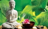 5-thoi-quen-giup-ban-can-bang-cuoc-song-thanh-tinh-tam-hon-338792.html