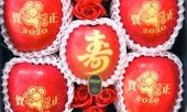 tao-in-hinh-chuot-dat-ngang-vang-an-1-qua-mat-ngay-bac-trieu-347445.html