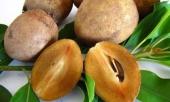 6-loai-trai-cay-cuc-doc-voi-nguoi-bi-tieu-duong-them-may-cung-cho-dai-ma-an-349775.html