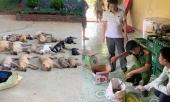 thong-tin-moi-nhat-vu-ha-doc-nua-tan-cho-bang-xyanua-o-thanh-hoa-357189.html