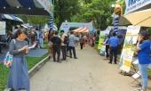 hang-loat-tour-di-phu-quoc-nha-trang-ha-noi-bi-huy-vi-lo-ngai-covid-19-359246.html