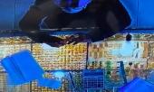 truy-xet-nam-thanh-nien-cuop-2-chiec-nhan-tri-gia-hon-100-trieu-dong-o-tiem-vang-tai-sai-gon-363293.html