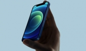 tai-sao-iphone-11-dang-mua-hon-iphone-12-363616.html