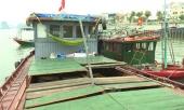 bat-nhom-toi-pham-lam-luat-hang-tram-ti-dong-tren-vinh-ha-long-367591.html