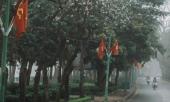 ha-noi-17-do-gia-vo-nong-de-chuan-bi-mua-dong-ngay-28-tet-368006.html