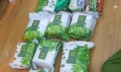 pha-duong-day-ma-tuy-thu-30-banh-heroin-60-ngan-vien-thuoc-lac-o-sai-gon-371070.html