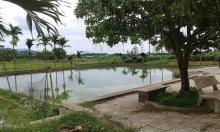 Hai chị em 4 tuổi và 2 tuổi đuối nước ở ao đình: Lời kể ám ảnh của nhân chứng