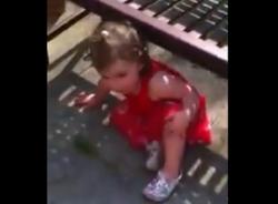 Video hài hước (P123): Bé gái chơi trốn tìm cực dễ thương