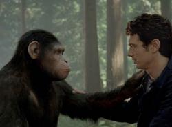 'Sự khởi đầu của hành tinh khỉ' - Phim bom tấn hè 2014