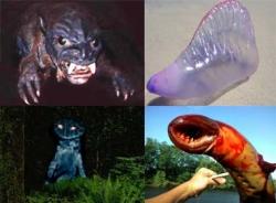 Nhiều sinh vật lạ bí ẩn xuất hiện khắp thế giới
