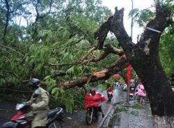 Những nguyên tắc cần nắm để tránh tai nạn mùa mưa bão