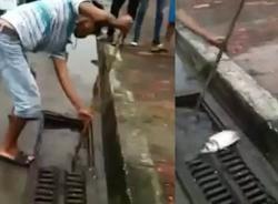 Clip: Cảnh bắt cá trên đường chỉ có tại Việt Nam
