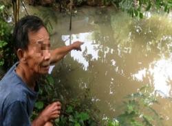 Ông bố 'nhi đồng' ném con xuống ao vì giận bữa ăn toàn cá