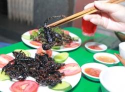 Quán nhậu côn trùng vỉa hè giá rẻ của sinh viên ở Hà Nội