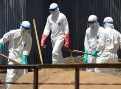 Dịch Ebola giảm ở Loberia, nhưng còn sớm để ăn mừng