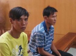 Bi hài hai người ngồi tù vì khiêng cây mai giúp kẻ trộm
