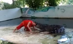 Kinh hoàng: nghệ sĩ xiếc nổi tiếng Thái Lan bị cá sấu ngoạm đầu, hôn mê