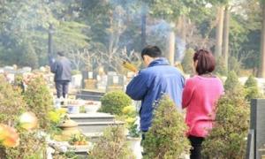 Những lưu ý cho các gia đình đi tảo mộ cuối năm