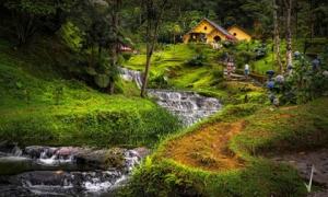 Những chân sút Colombia cừ khôi đến từ đất nước đẹp như tranh vẽ này đây
