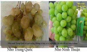 Những mẹo phân biệt thực phẩm Trung Quốc và Việt Nam, hoá ra chúng ta toàn mua nhầm đồ Trung Quốc