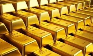 Giá vàng hôm nay 12/8: Căng thẳng đè chìm giá vàng