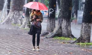Hà Nội 'đẹp lạ' trong ngày gió lạnh đầu mùa tràn về