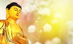 6 chân lý hạnh phúc từ những lời Phật dạy: ai đã biết thì đừng bao giờ bỏ qua