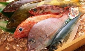 Mẹo phân biệt cá biển tươi và cá biển chứa chất độc hại chị em nhất định phải biết