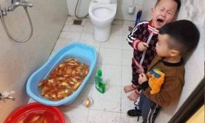 Mẹ 'khởi nghiệp' buôn cá vàng cúng Táo, con thương mẹ tắm cá và cái kết cười ra nước mắt