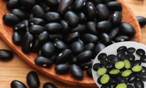 Thuốc quý từ đậu đen cho người thận hư, gan yếu, liệt dương