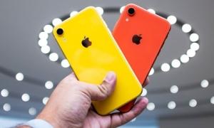 So sánh iPhone 8 và iPhone XR: Sự khác biệt giữa cách tân và cổ điển