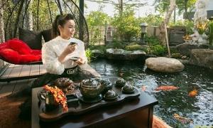 Nhật Kim Anh: Tài sản trị giá 5 tỷ đã mất là tiền tôi kiếm nhiều năm