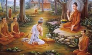 Bài học tha thứ từ Đức Phật thức tỉnh nhiều người