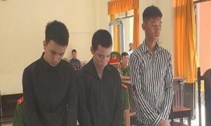 Nhóm thanh niên chia nhau 8 năm tù vì cướp giật tài sản của du khách nước ngoài