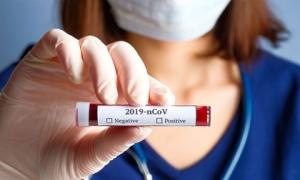 Phát triển thành công kháng thể tiêu diệt virus corona