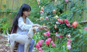 Nữ triệu phú USD: Bí quyết làm giàu của cô gái từng bị mẹ kế bạo hành Lý Tử Thất