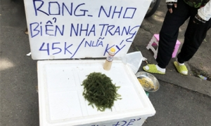 Thực phẩm 'nhà giàu' tràn ra vỉa hè với giá rẻ bèo