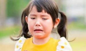 4 dấu hiệu cho thấy trẻ có EQ thấp, cha mẹ cần lưu ý